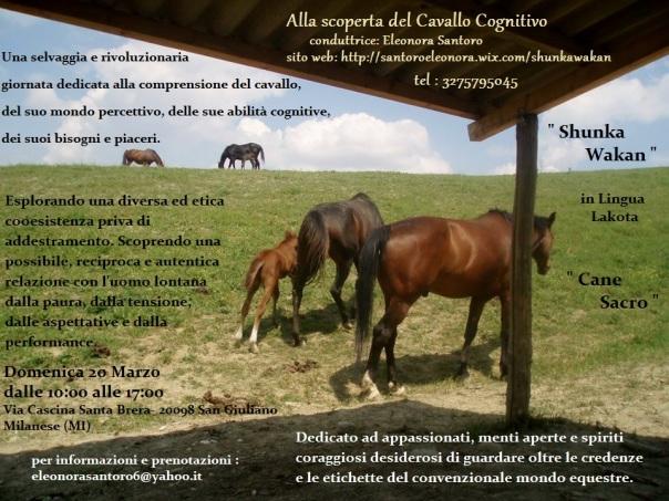 Locandina cavallo cognitivo